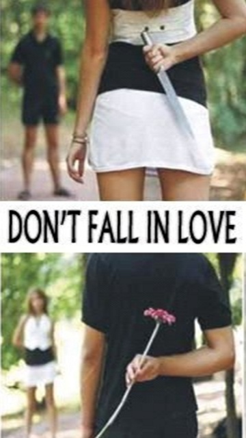 Dont fall in love
