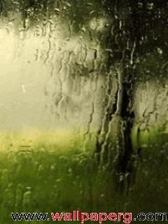 Animated rain