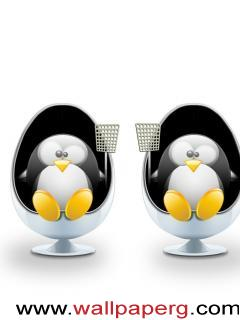 Twins penguin ,wide,wallpapers,images,pictute,photos