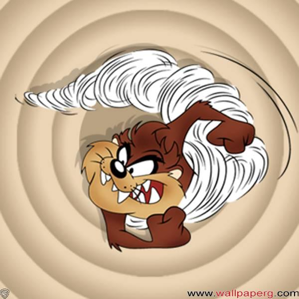 Taz in angry mood ,wide,wallpapers,images,pictute,photos