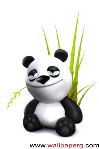 Baby panda ,wide,wallpapers,images,pictute,photos