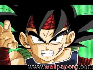 Dragon ball z bardock