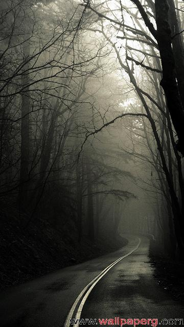 Dark way ,wide,wallpapers,images,pictute,photos