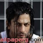 Shahrukh khan don2