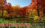 Fall pond ,wide,wallpapers,images,pictute,photos