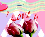 Rose i love u ,wide,wallpapers,images,pictute,photos