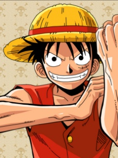 One piece hero