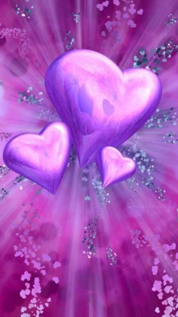 Purple hearts ,wide,wallpapers,images,pictute,photos