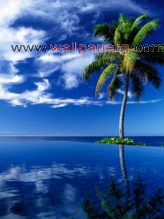 Summer time ,wide,wallpapers,images,pictute,photos