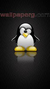 Pingu ,wide,wallpapers,images,pictute,photos