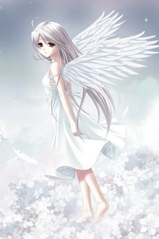 White angel ,wide,wallpapers,images,pictute,photos