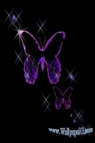 Purple butterfly ,wide,wallpapers,images,pictute,photos