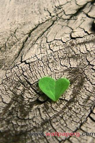Green heart ,wide,wallpapers,images,pictute,photos