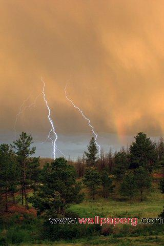 Lightning woods ,wide,wallpapers,images,pictute,photos
