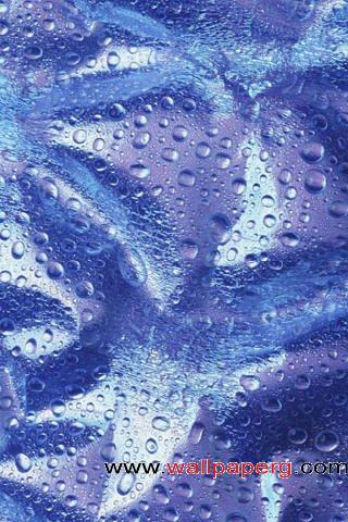 Raindrop ,wide,wallpapers,images,pictute,photos