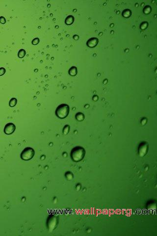 Green drops of water ,wide,wallpapers,images,pictute,photos