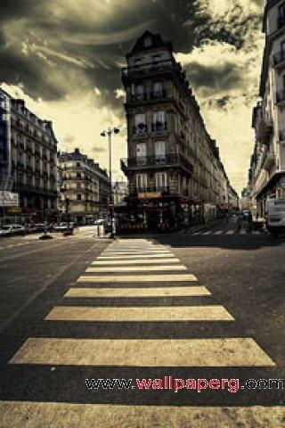 Zebra crossing ,wide,wallpapers,images,pictute,photos