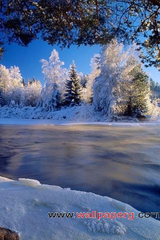 A winter wonderland ,wide,wallpapers,images,pictute,photos