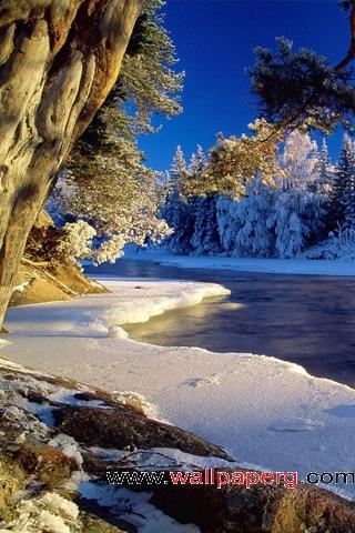 Snowy season ,wide,wallpapers,images,pictute,photos