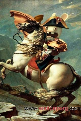 Napoleon bunny ,wide,wallpapers,images,pictute,photos