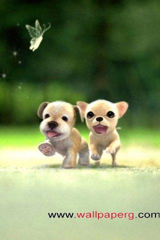 Twin dog ,wide,wallpapers,images,pictute,photos