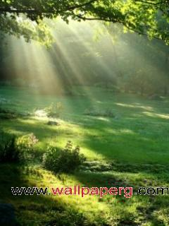 The sun rays ,wide,wallpapers,images,pictute,photos
