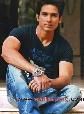 Stylish shahid ,wide,wallpapers,images,pictute,photos