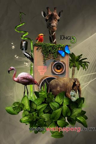 Audio jungle ,wide,wallpapers,images,pictute,photos