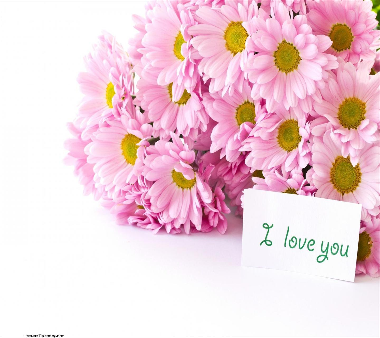 Download I Love You At Your Mobile Cell Phone | Apps ...