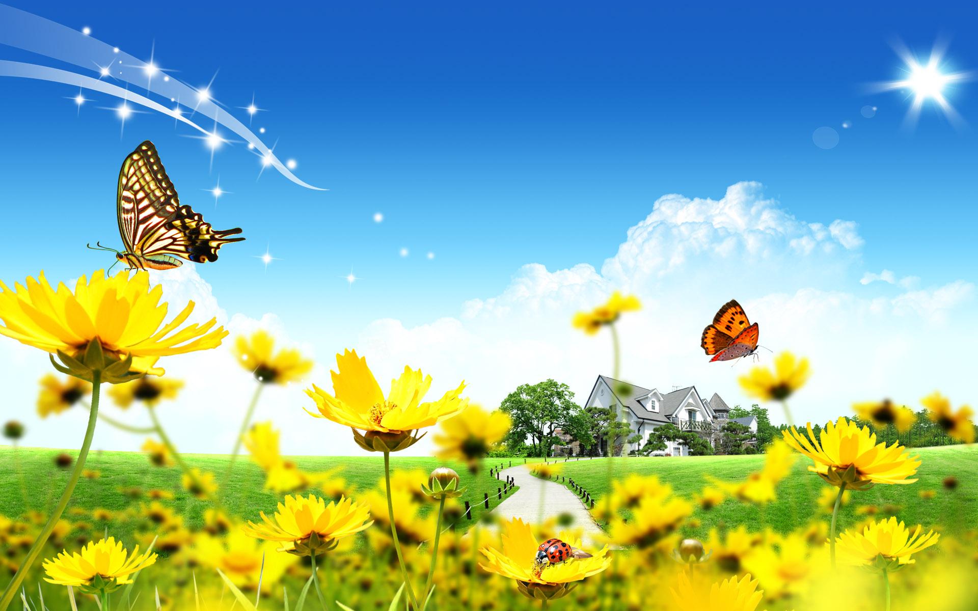 Flower Love Nature Wallpaper Hd For Mobile