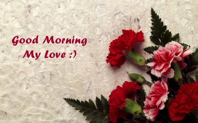 Download Good Morning My Love With Flowers Wallpaper For Mobile Cell Phone