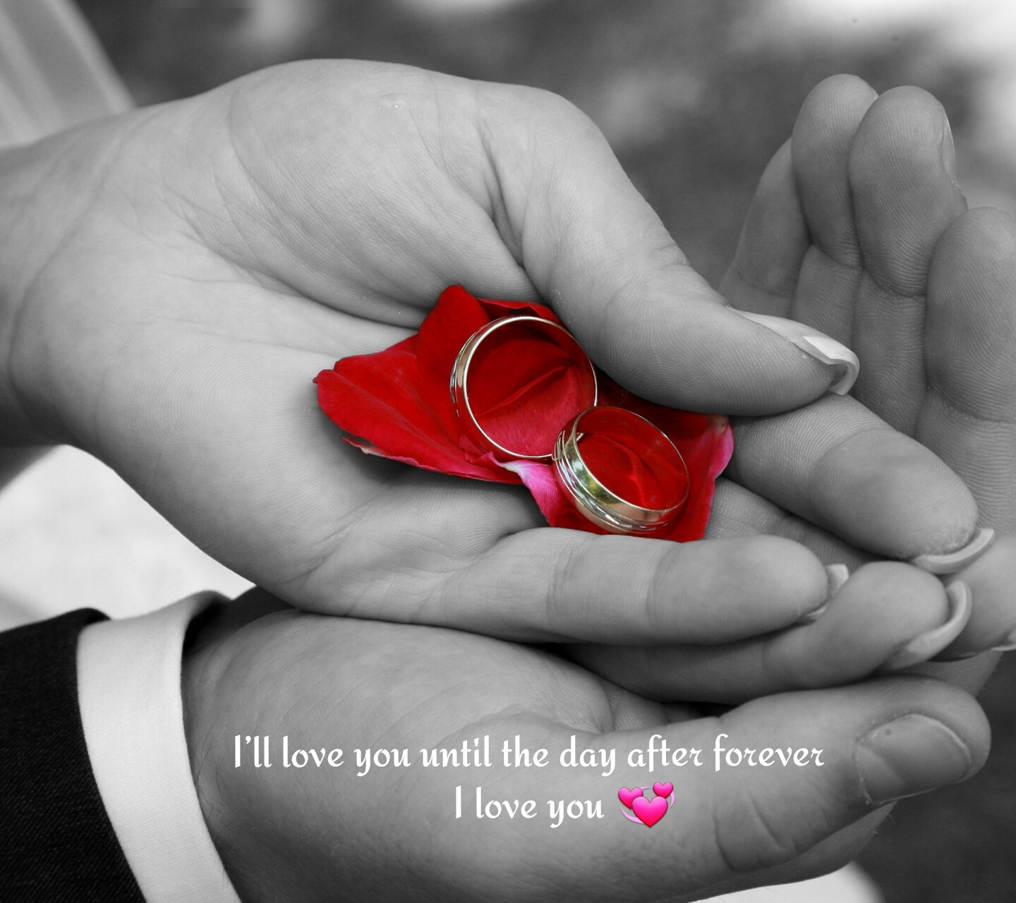 Download Untill The Day Love Forever Image Wallpaper For Mobile Cell Phone
