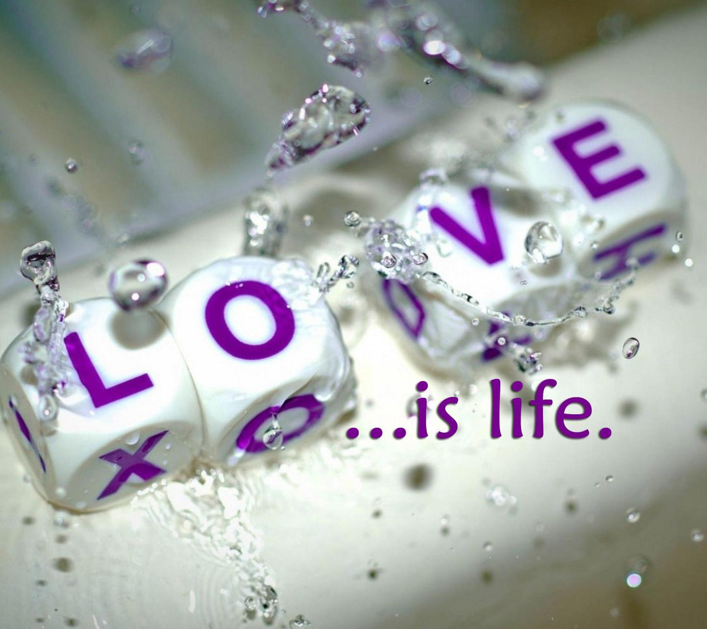 Download Love Is Life Hd Wallpaper For Facebook