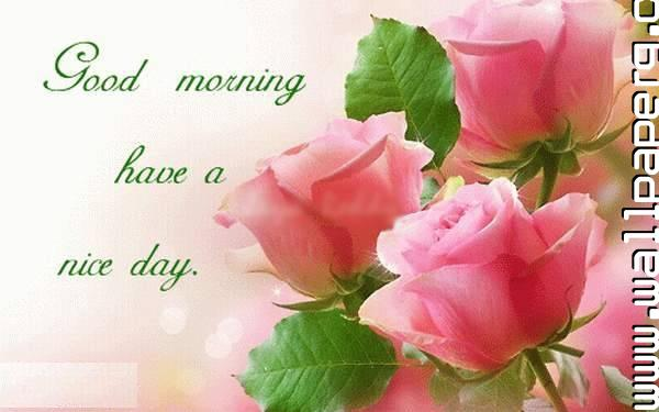 Download Happy Morning Have A Nice Day Wallpaper For Mobile Cell Phone