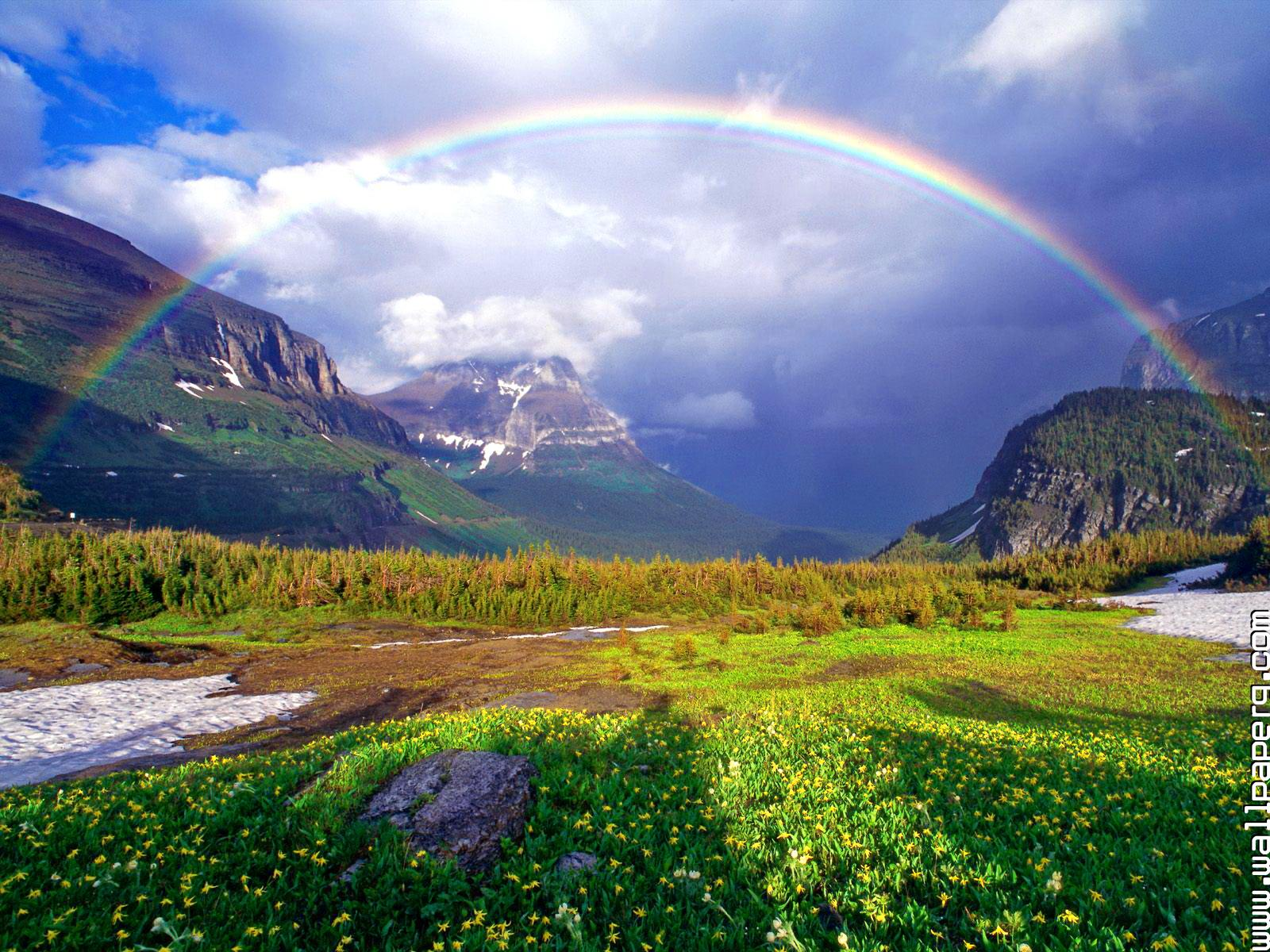 Popular Wallpaper Mountain Rain - 1410119364-after-the-summer-rain-file-www  Collection_662391.jpg